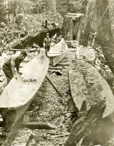 Making 4 canoes from 1 tree.