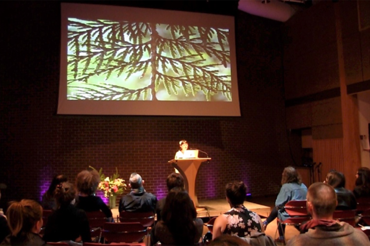 A cedar branch featured in Minah Lee's presentation at SFU School for the Contemporary Arts' Through the Tulgey Wood: MA Symposium, 2017, at SFU Goldcorp Centre for the Arts, Unceded Coast Salish Territories.