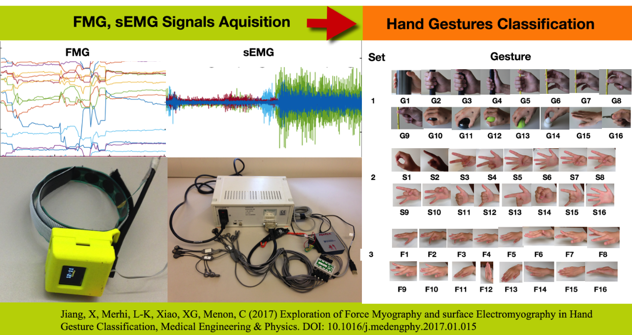 Exploration of Force Myography and Surface Electromyography in Hand Gesture Classification