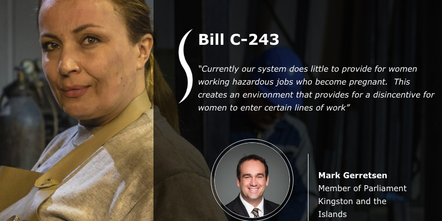 NSERC Chairs for Women in Science and Engineering Endorse Bill C-243