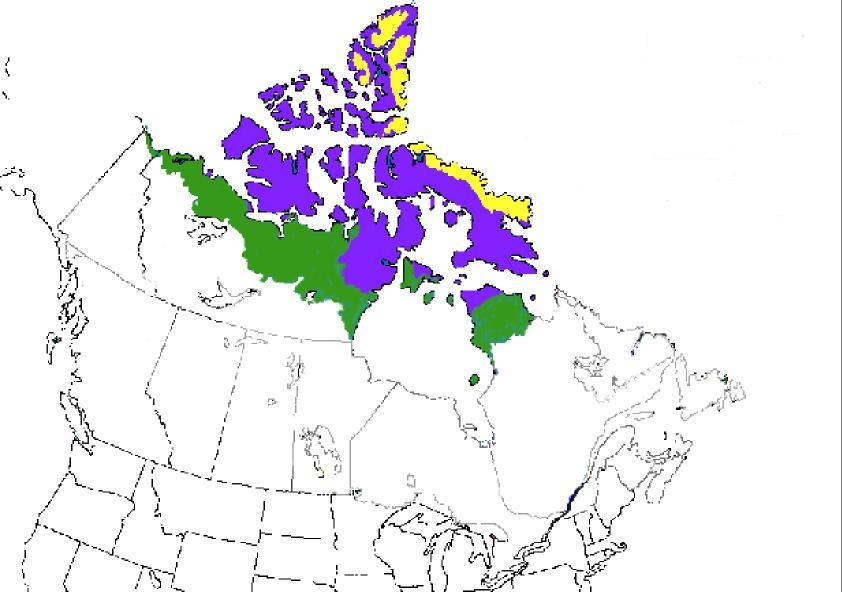 Map Of Canada Ecozones.Exploration Of The Canadian Arctic