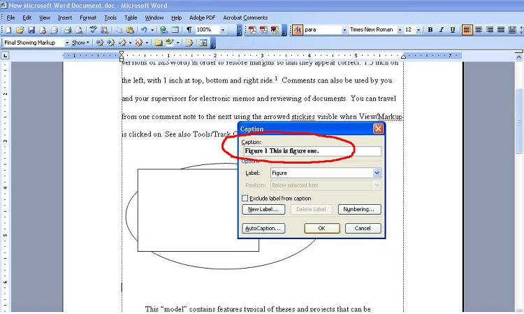 Using cross-reference in MS Word