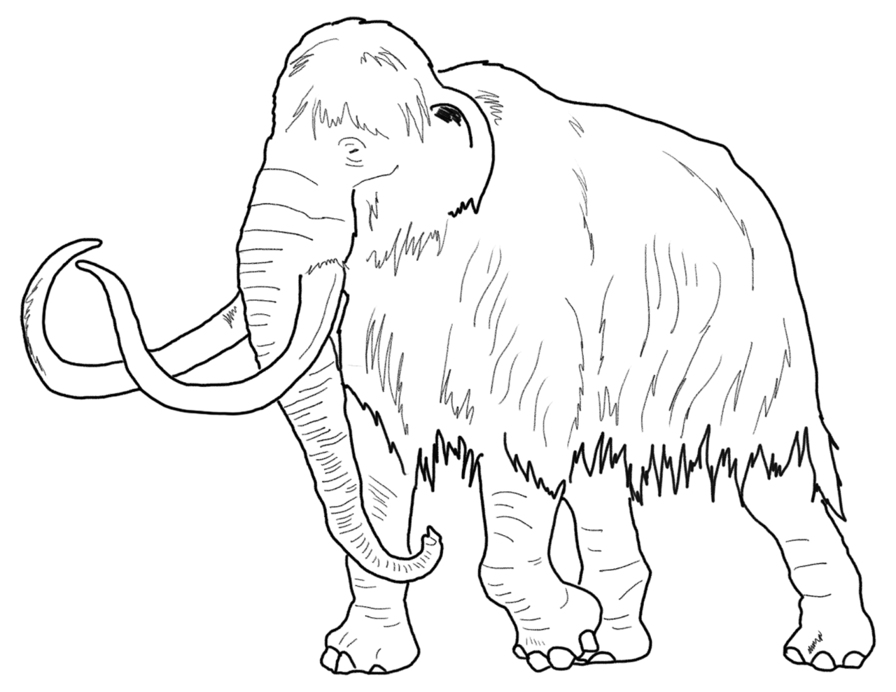 coloring pages museum of archaeology u0026 ethnology simon fraser