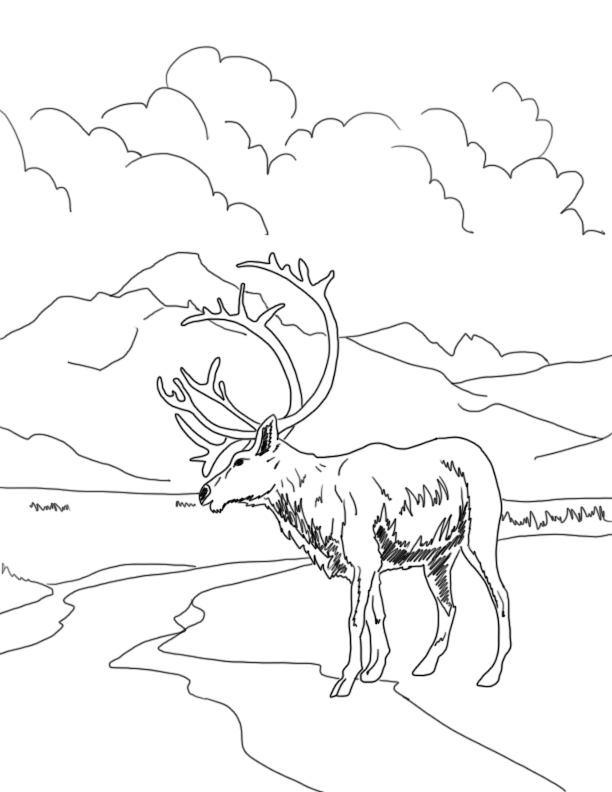 coloring pages museum of archaeology ethnology simon fraser