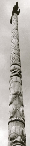 Pole of Chief 'Willitsxw 2