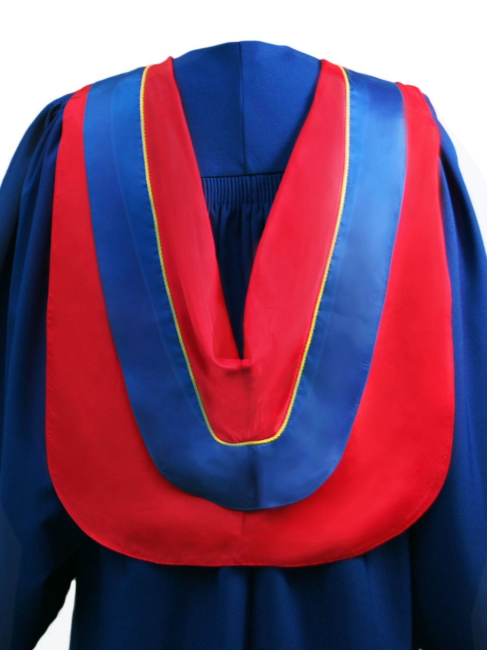 The Master of Publishing hood is red with wide blue border and yellow cording