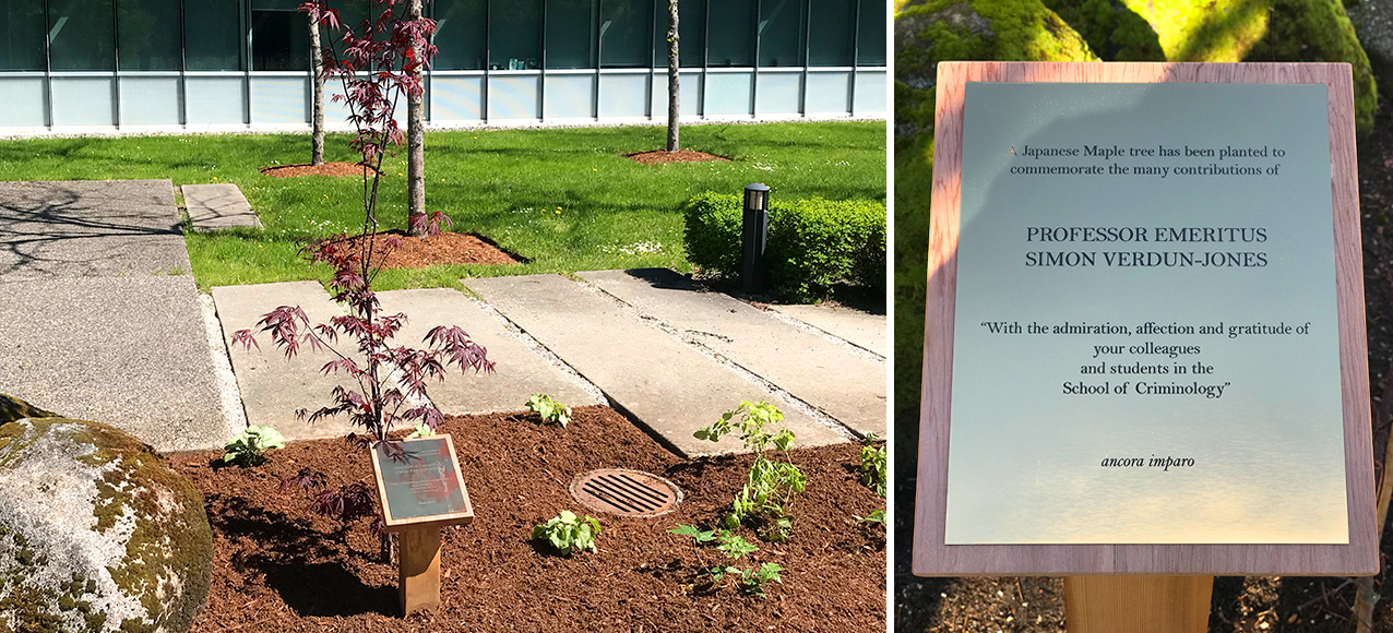 A Japanese Maple tree has been planted to commemorate the many contributions of Professor Emeritus Simon Verdun-Jones.