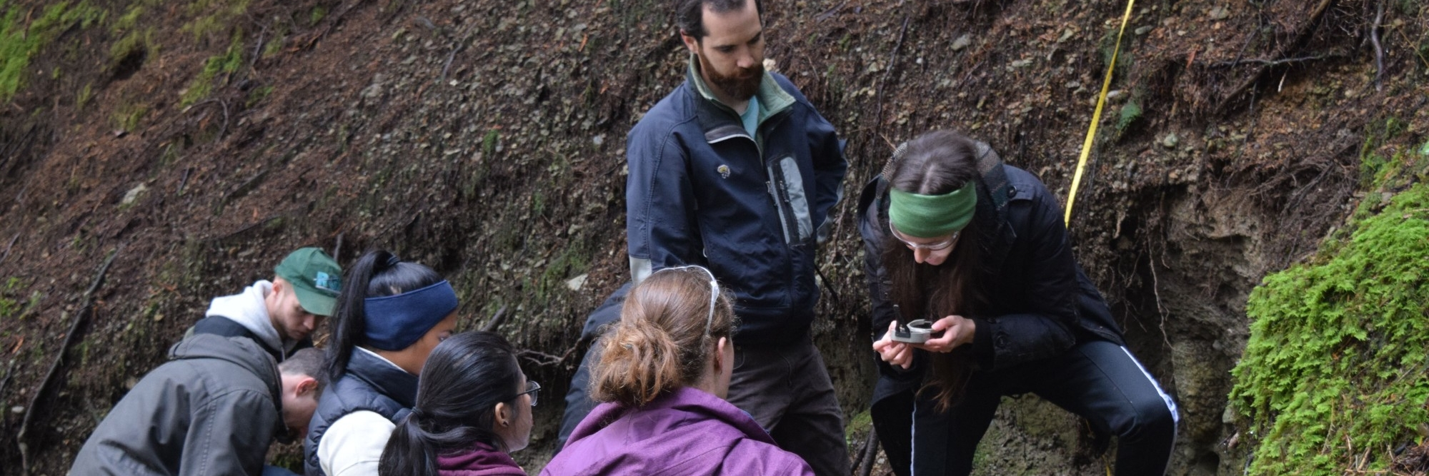 Co-op student standing on a pile of cut logs in the middle of a field