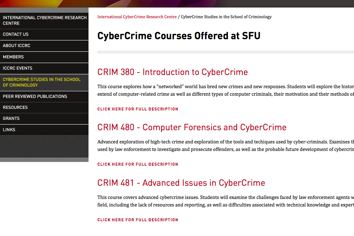 CyberCrime Studies in the School of Criminology