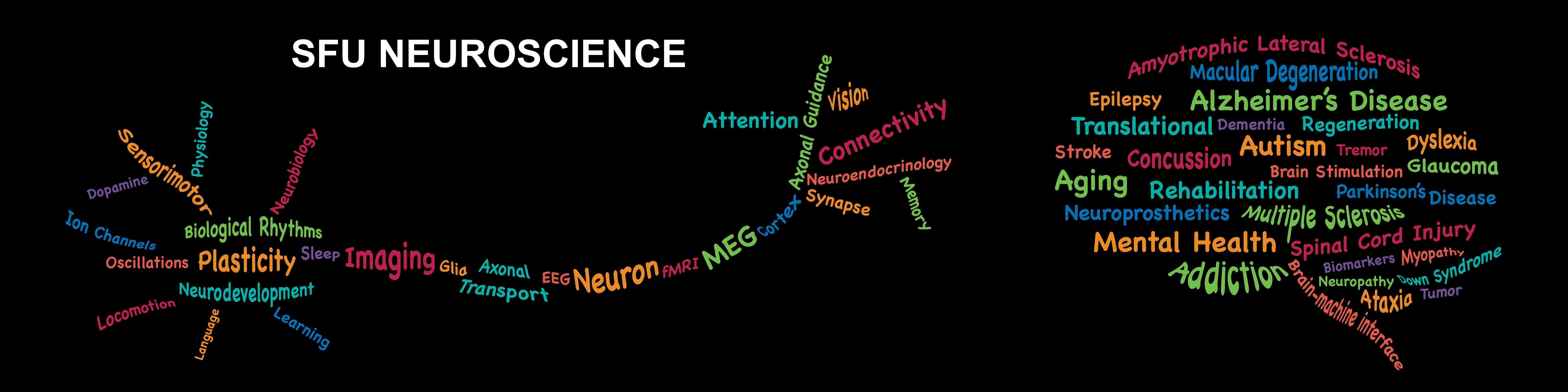 SFU Neuroscience - Simon Fraser University
