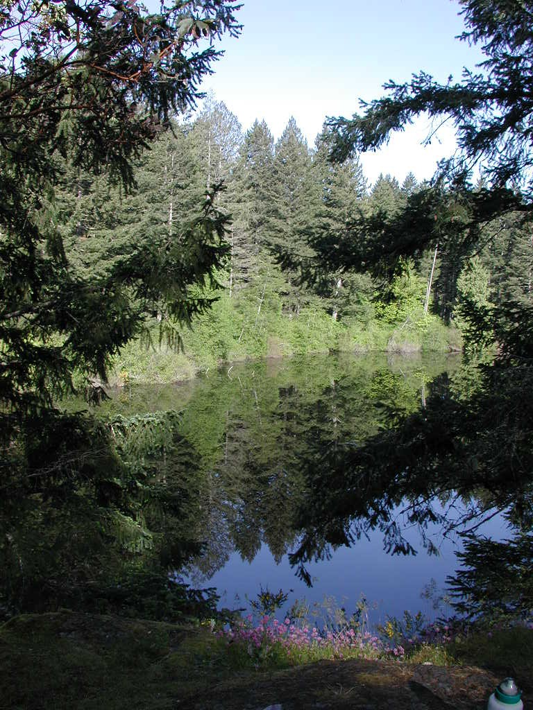 Thetis Lake Park, near Victoria