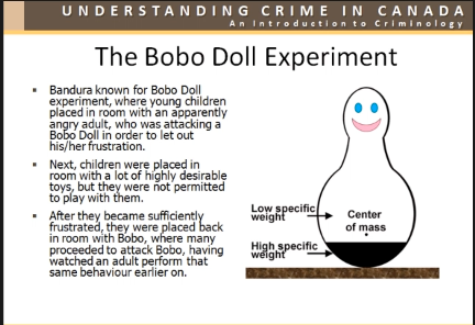 the bobo doll experiment and learning
